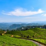 Travel Inspiration: Munnar – The Kashmir of South India